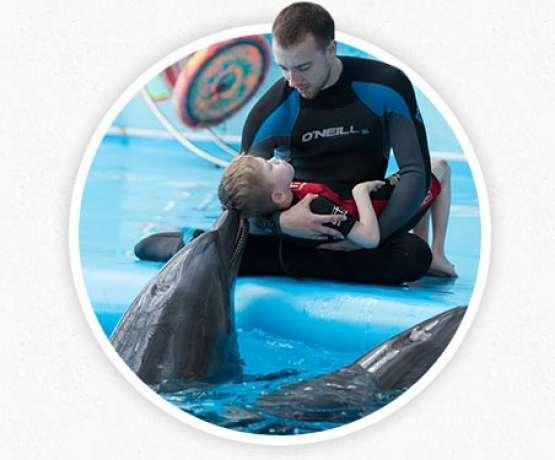 Механизмы воздействия дельфинотерапии - фото и информация на therapynemo.com