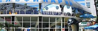 Kontakte des Delphintherapiezentrums in Charkiw, Foto